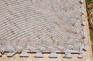 detail outdoor blocking and dried-up grass